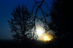 Camera alla notte Fotografia Stock Libera da Diritti