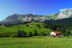 Camera in Axpe in Paese Basco Fotografia Stock Libera da Diritti