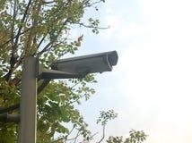 Camera cam in garden. Camera cam security in garden royalty free stock photos