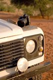 Camera on car. Hood on african desert Royalty Free Stock Image