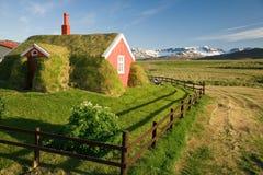 Camera con il tetto dell'erba Immagini Stock