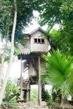 Camera costruita su un albero fotografia stock libera da diritti