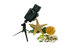 The camera and costume jewellery. Composition with the old camera and a starfish, pineapple and costume jewellery Stock Photos