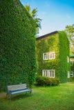 Camera d'annata coperta dall'edera verde nel parco Fotografia Stock