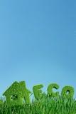 Camera da erba e dal eco di parola Fotografie Stock