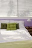Camera da letto di ospite casuale Fotografia Stock Libera da Diritti