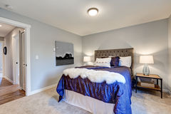 Camera da letto principale adorabile con le pareti grige molli Fotografie Stock Libere da Diritti