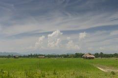 Camera del villaggio di assamese vicino a Tinsukia l'Assam immagini stock libere da diritti