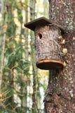 Camera dell'uccello Immagine Stock