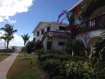 Camera di Bush della palma della località di soggiorno dell'hotel della villa Fotografia Stock