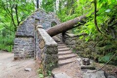 Camera di pietra abbandonata alla traccia di foresta vergine Fotografia Stock Libera da Diritti