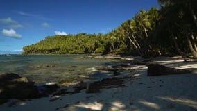 Camera die zich vooruit op een mooi tropisch strand met wit zand, palmen bewegen stock videobeelden