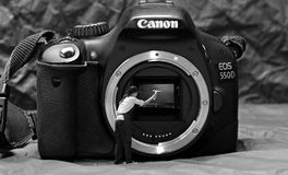 Camera, Digital Camera, Single Lens Reflex Camera, Cameras & Optics Royalty Free Stock Images