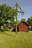 Camera ed albero di metà dell'estate Fotografia Stock Libera da Diritti