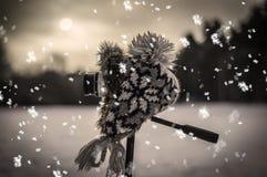 Camera en het de winterlandschap Stock Afbeeldingen
