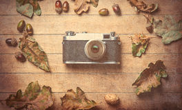 Camera and fallen leaves Royalty Free Stock Images