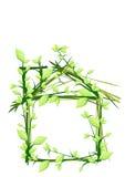 Camera fatta della pianta Immagine Stock