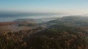 The camera flies over the fields and forests. in the distance is fog on the horizon. Video footage. Aerial camera flies over the fields and forests. in the stock video footage
