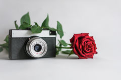 Camera with flowers on a white background. An old camera lying on background with flower stock photos