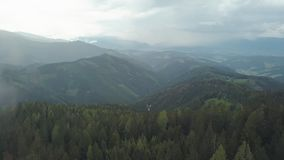 Camera is flying over amazing pine forest on mountain, through clouds, moving back. Aerial shot stock footage