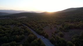 Aerial view of green forest mountains. Camera flying over beautiful forest landscape at golden hour time stock video