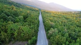 Aerial view of green forest mountains. Camera flying over beautiful forest landscape with long speedway at golden hour time stock video footage