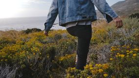 Camera follows young happy woman walking among yellow flowers and dry plants to amazing rocks on Big Sur ocean coastline. Excited local millennial girl finding stock video