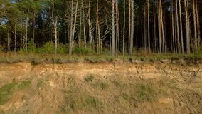 Camera goes near the steep bank with trees stock footage