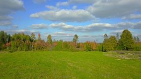 Camera going over the meadow near autumn trees stock video footage