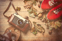 Camera and gumshoes. Photo of the beautiful camera, gumshoes and fallen leaves on the brown wooden background Royalty Free Stock Photography