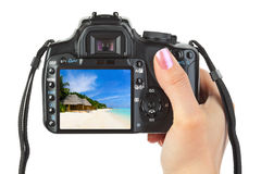 Camera in hand and beach landscape Stock Images