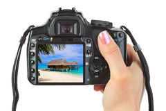 Camera in hand and beach landscape Royalty Free Stock Images