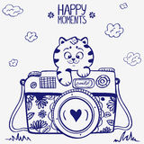 Camera kitten Royalty Free Stock Image