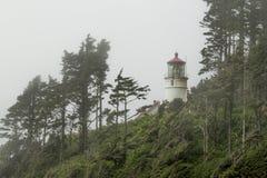 Camera leggera capa di Heceta, Oregon Immagine Stock Libera da Diritti