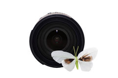 Camera lens with butterfly in front Stock Photo
