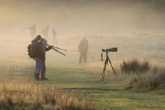 Camera men in the fog Stock Image