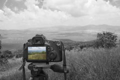 Camera met landschap Royalty-vrije Stock Afbeeldingen