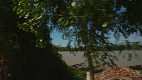 Camera on Motorbike Films River Bank with Palms Boats stock video footage