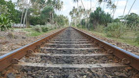 Camera move forward along the railway with exotic tropical nature at background. The rail tracks close up. Point of view. Of train moving along tracks in asia stock video