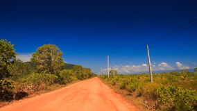 Camera Moves along Ground Road Trees High-voltage Line. Camera moves along ground road between thick tropical plants and high-voltage line against blue sky stock video