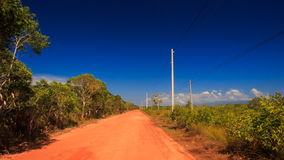 Camera Moves along Ground Road Trees High-voltage Line. Camera moves along ground road between thick tropical plants and high-voltage line against blue sky stock footage