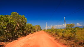 Camera Moves along Ground Road Trees High-voltage Line. Camera moves along ground road between thick tropical plants and high-voltage line against blue sky stock video footage