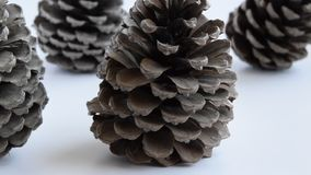 Camera moves along of pine cones on white background. Seasonal holiday background, concept stock video
