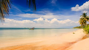 Camera Moves from Azure Sea to Golden Beach with Palms. Camera moves from azure sea with Vietnamese tourist boats to golden sand beach with palms stock video footage