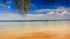 Camera Moves from Golden Beach with Palms to Azure sea. Camera moves from golden sand beach with palms to azure sea with Vietnamese tourist boats stock footage
