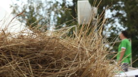 Camera Moves Past Dry Grass and Shows Man Tuning Antenna. KAZAN, TATARSTAN/RUSSIA - MAY 15 2013: Camera moves aside past dry grass and shows man in green t-shirt stock footage
