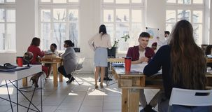 Camera moves right along modern light loft office, multiethnic business people working at healthy workplace atmosphere. Positive diverse corporate employees stock video footage