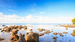 Camera Moves to Different Stones in Shallow Water. Camera approaches different stones in shallow water and tree at foreground against blue sky stock footage