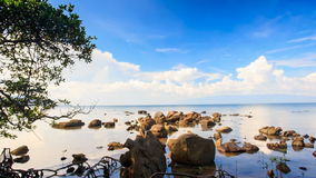 Camera Moves to Different Stones in Shallow Water. Camera approaches different stones in shallow water and tree at foreground against blue sky stock video
