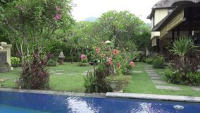The camera moves on a tropical garden with the pool lengthways the blossoming trees. Bali. Indonesia. The camera moves on a tropical garden with the pool stock footage